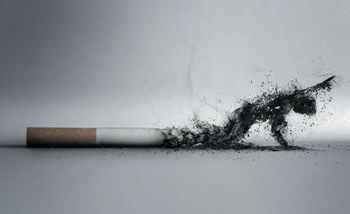The_Smoke_by_lucaszoltowski.jpg